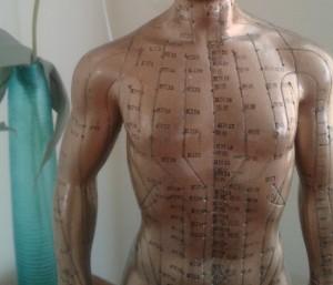 pds acupunctuur